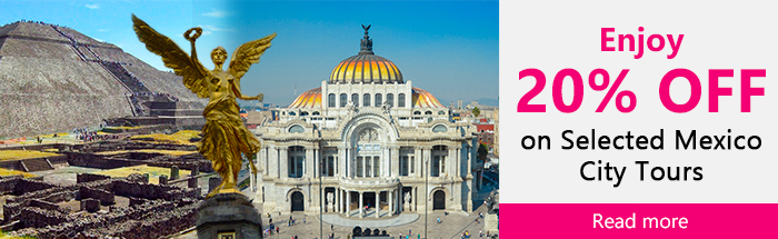 Enjoy 20% off on Selected Mexico City Tours